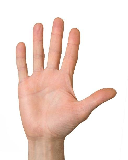 Biodecodificación – Dedos de las manos