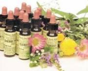 Terapias Florales Bach, Mediterráneo y Elixires Minerales