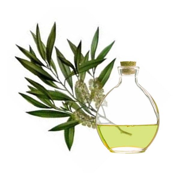 30 usos beneficiosos del aceite de árbol de té