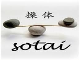 ¿Qué es la Terapia SOTAI?